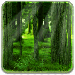 Icon RealDepth Forest Live Wallpaper