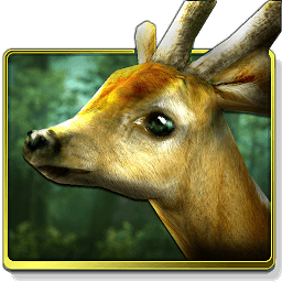Icon Forest HD