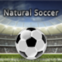 Icon Natural Soccer