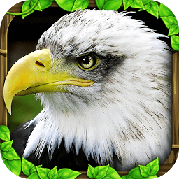 Icon Eagle Simulator